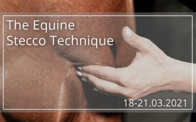 Manipulacje powięziowe wg. Stecco (AFM) – Kurs 1. stopnia – konie 28-31.10.2021