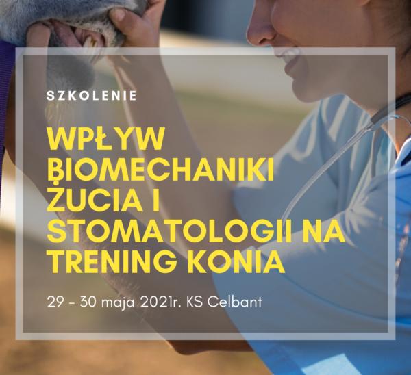 Wpływ biomechaniki żucia i stomatologii na trening konia